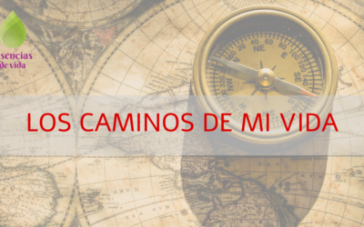 NUMEROLOGÍA 6-LOS CAMINOS DE MI VIDA